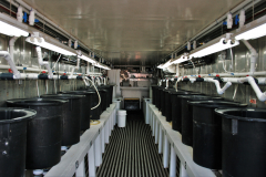 Research Larval Facility